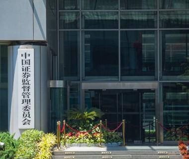 证监会牵头成立打击资本市场违法协调小组 首次会议提出四方面工作要求